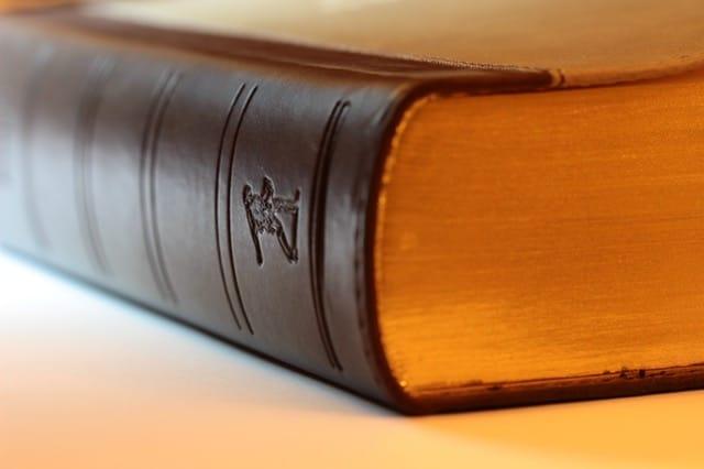 pack business plan juridique